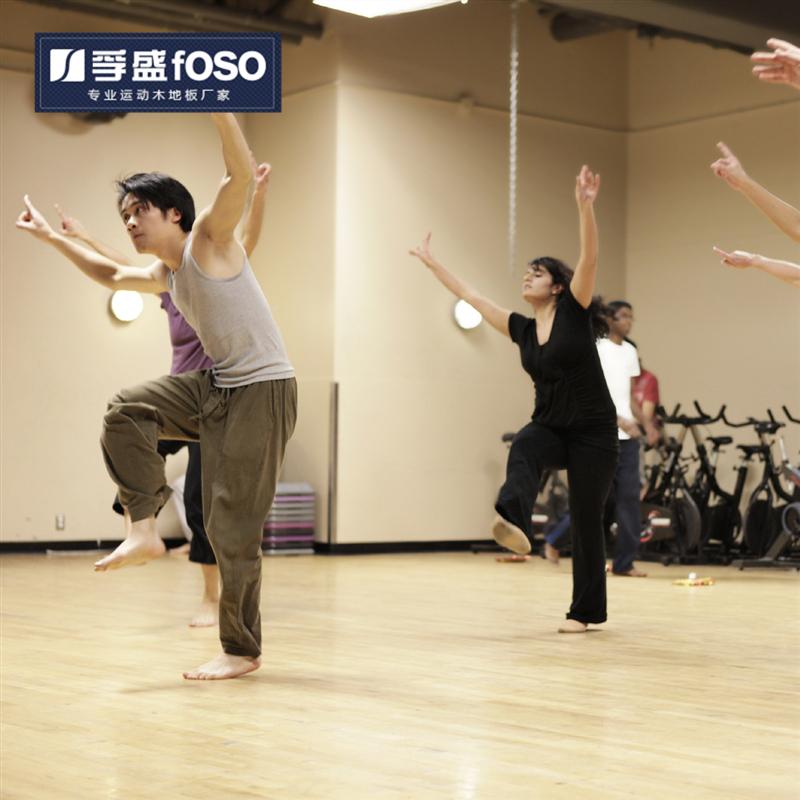 舞蹈教室专用龙8国际授权网站(图1)