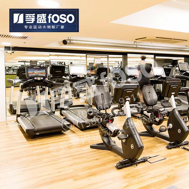 健身房专业龙8国际授权网站(图1)